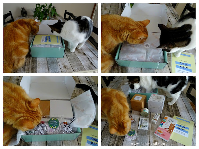 What's In The Box ©BionicBasil® Gus & Bella Box - Unveiling with Fudge and Melvyn