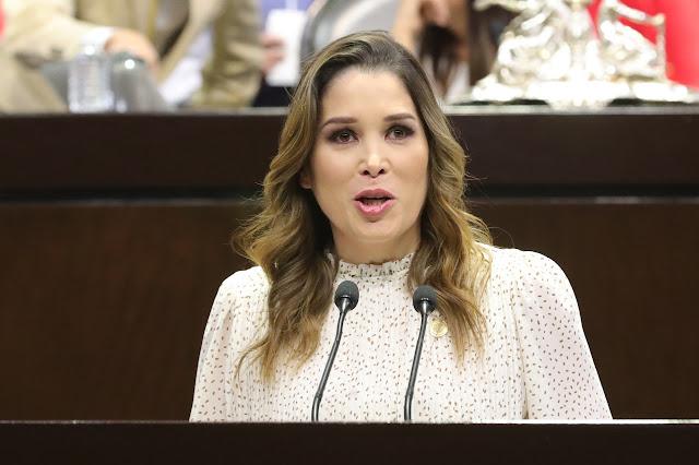 Plantea Ximena Puente de la Mora fortalecer la protección de datos personales en emergencias sanitarias
