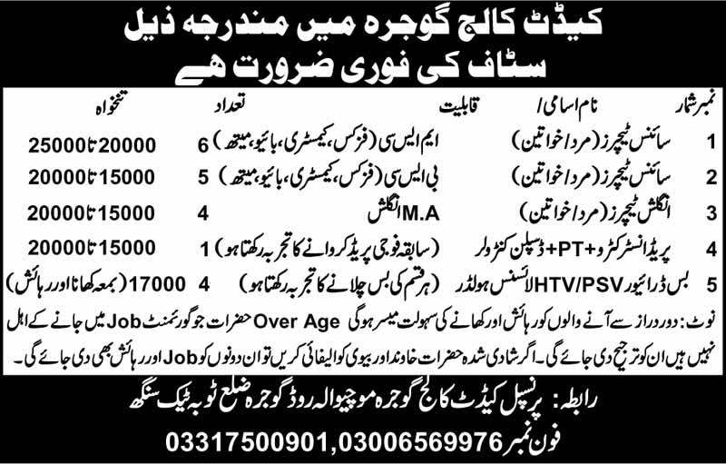 Jobs in Cadet College Gojra for Male & Female Staff