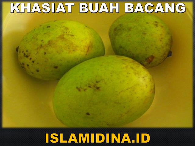 khasiat buah bacang