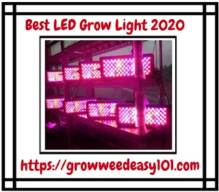 Best Led Grow Lights 2020.Best Led Grow Light 2020 Get Benefited In Many Ways