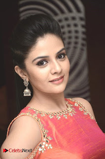 Sree Mukhi Pictures at Gentleman Success Meet ~ Celebs Next