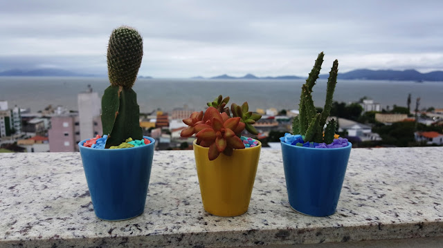 pedriscos-em-cores-para-decorar-terrarios
