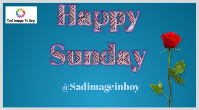 Happy Sunday Images | happy sunday morning, happy sunday morning images