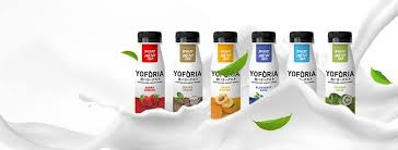 sejarah yogurt manfaat yogurt