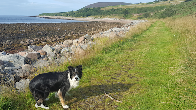 The Beach at Helmsdale, close to Helmsdale Hostel