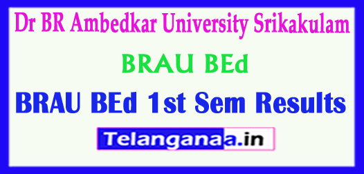 BRAU BEd Dr BR Ambedkar University Srikakulam BEd 1st Sem Results 2018