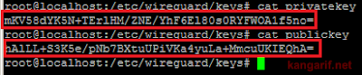 Cara Install WireGuard di VPS Ubuntu 20.04 64 bit