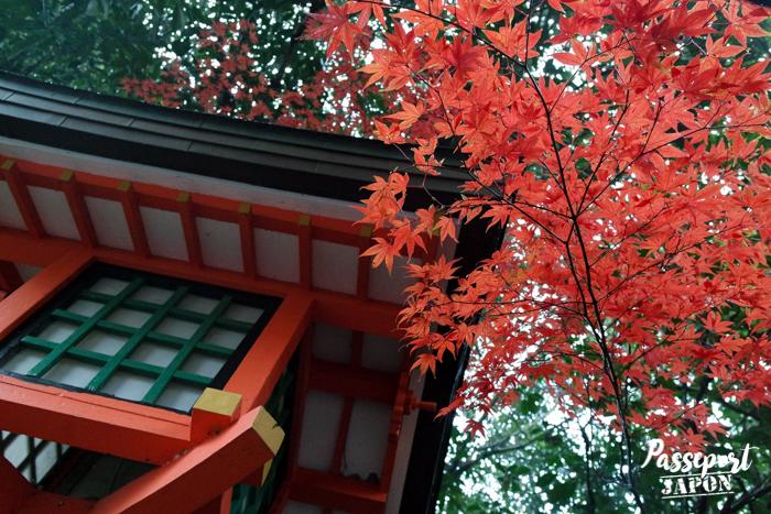 Lanterne et momiji, sanctuaire Usa-jingû, Oita