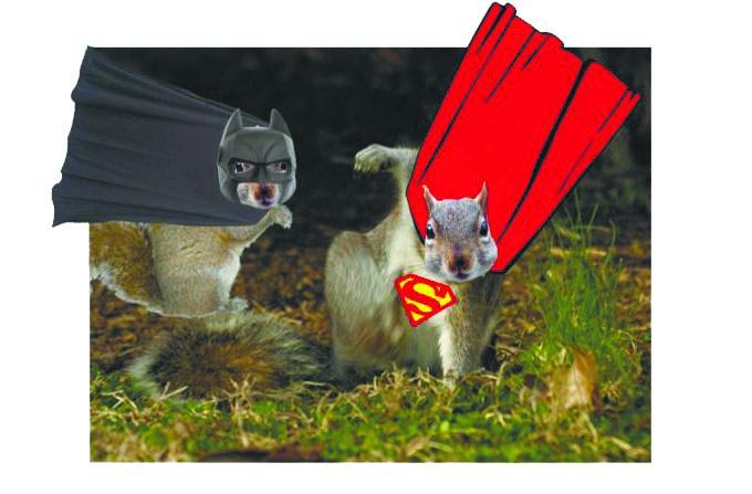 Super Squirrel Saves the Day Part 01 by Sachindu Perera – Melbourne