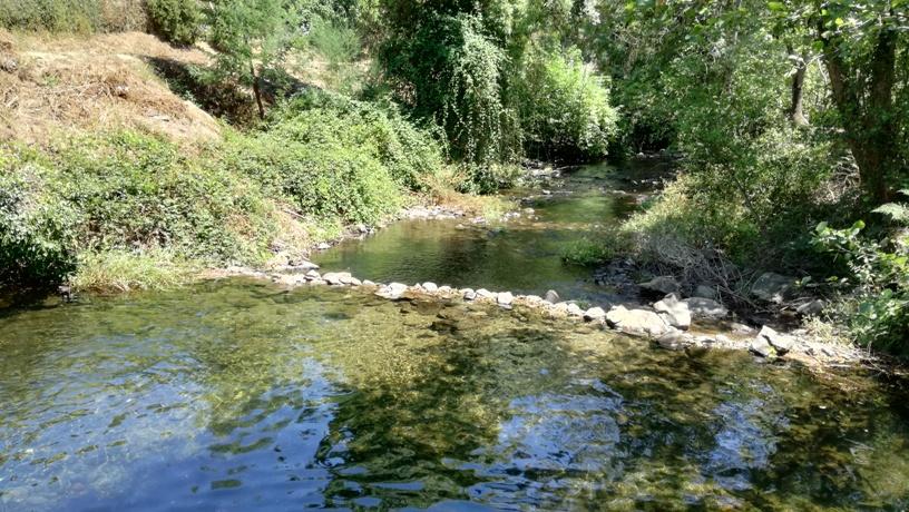 água límpida do Rio Teixeira