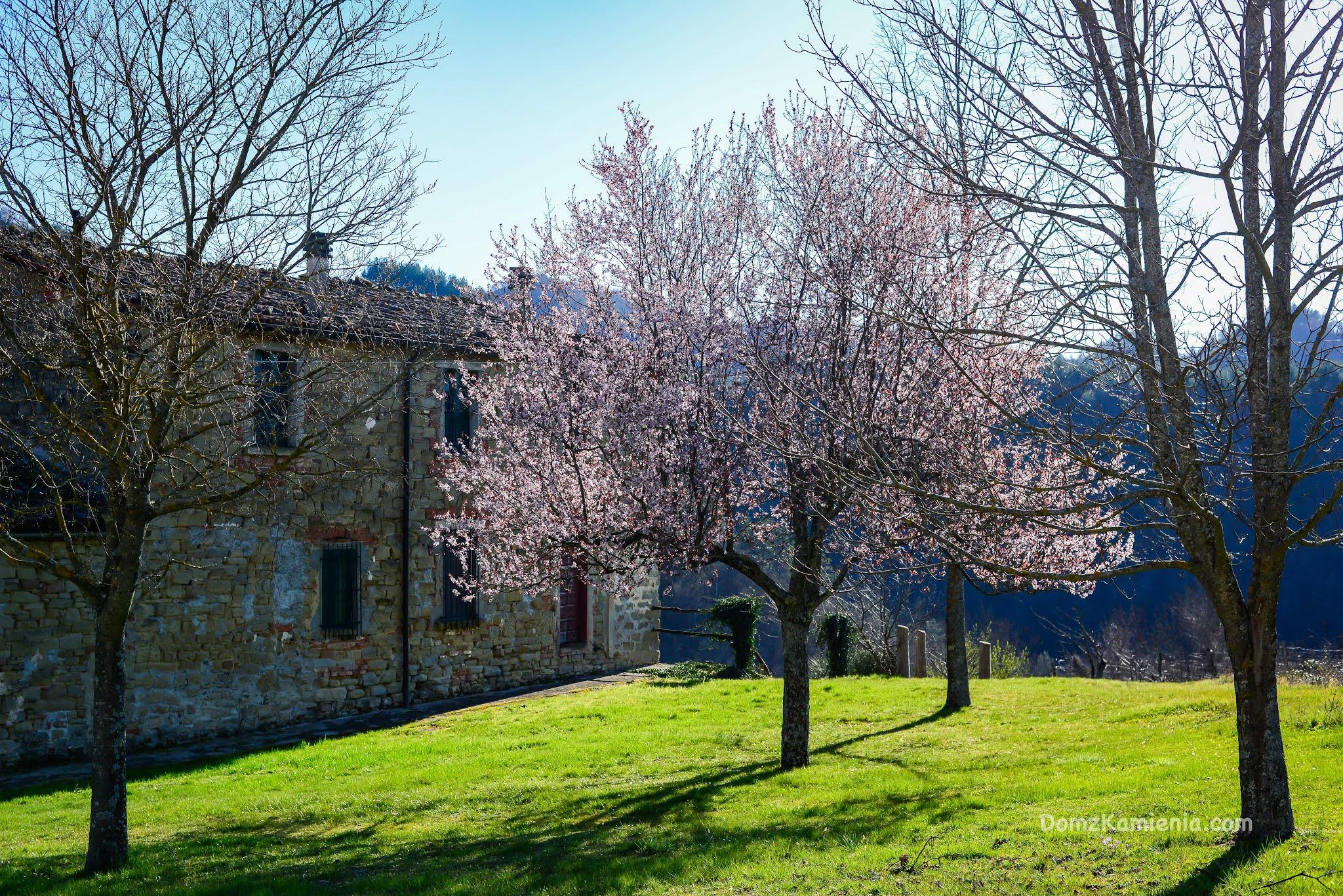Marradi, Dom z Kamienia, blog o życiu w Toskanii