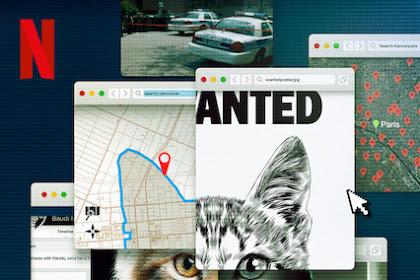 Don't F**k with Cats: Hunting an Internet Killer (2019 TV Mini-Seri) Sinopsis, Informasi