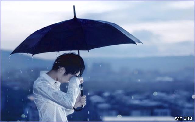 mưa hay giọt nước mắt anh rơi