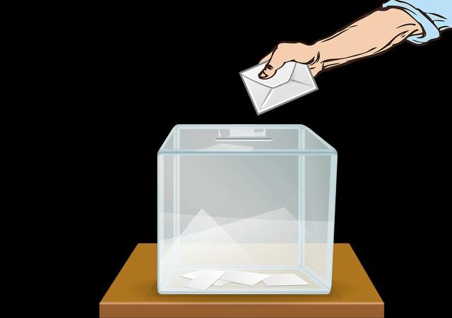 Lista de candidatos a Constituyentes Distrito 25