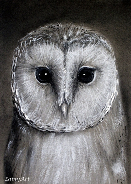 04-Barn-Owl-Alaina-Ferguson-Lainy-Animal-Charcoal-Portrait-Drawings-www-designstack-co