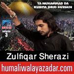 http://www.humaliwalayazadar.com/2017/10/zulfiqar-sherazi-nohay-2018.html