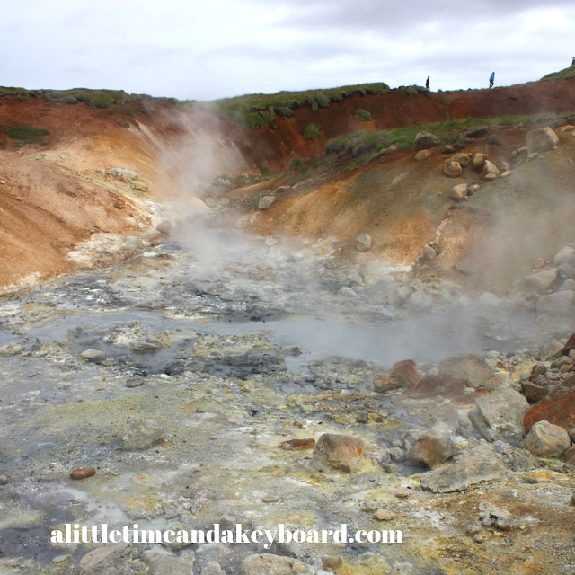 Hot steam, springs and bubbly mud pools bring Seltun alive.