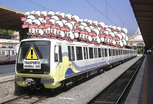 I guai del trasporto pubblico romano (e la Roma-Lido...)