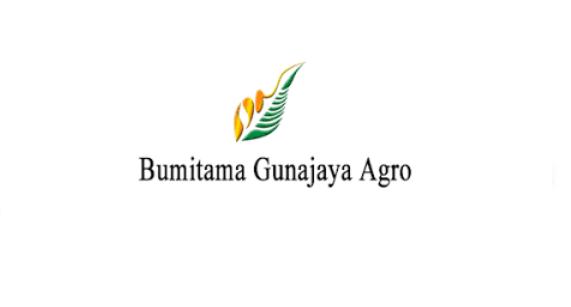 Lowongan Kerja PT Bumitama Gunajaya Agro (BGA Group) Management Trainee Mei 2020