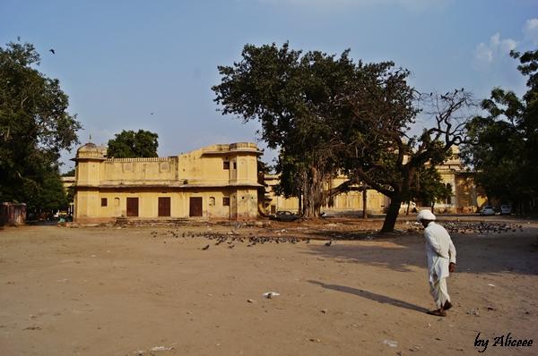 Jaipur-Rhajasthan-India