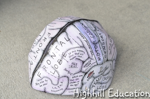 brain hat template highhill homeschool human body unit week 13 brain