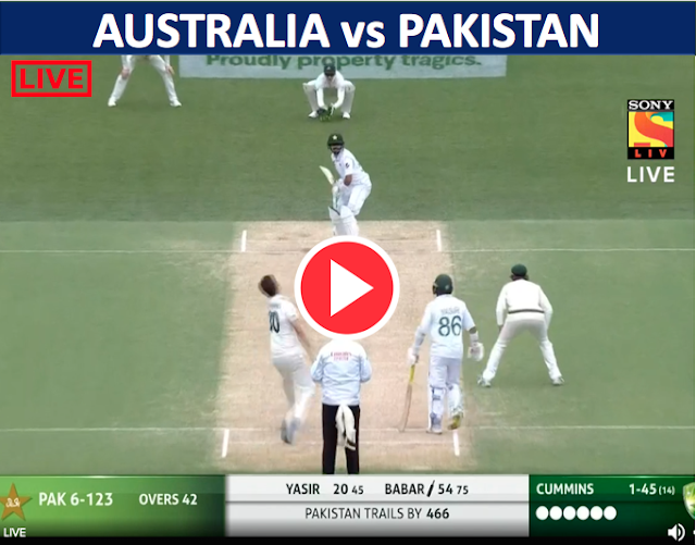 Watch : Australia vs Pakistan, 2nd Test, Fifties from Babar Azam lead Pakistan's fightback