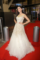 Rukshar Mir designer Anarkali Gown at 64th Jio Filmfare Awards South  2017 ~  Exclusive 113.JPG