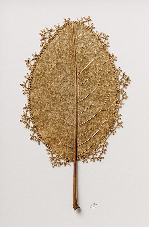 Frágiles esculturas de hojas de croché de Susanna Bauer