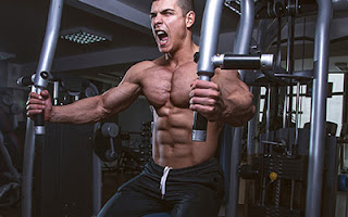 all-machine bodybuilding training