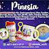 Pinesia Work
