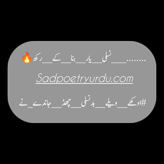shakir shuja abadi 2 line poetry sms