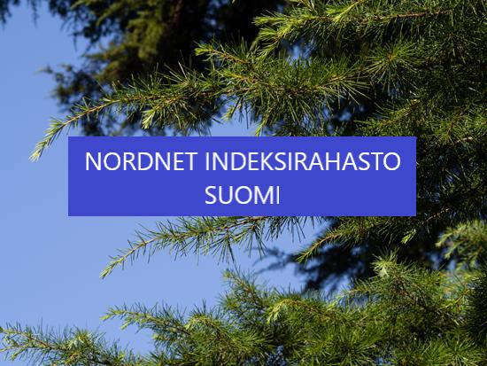 Nordnet Suomi Superrahasto