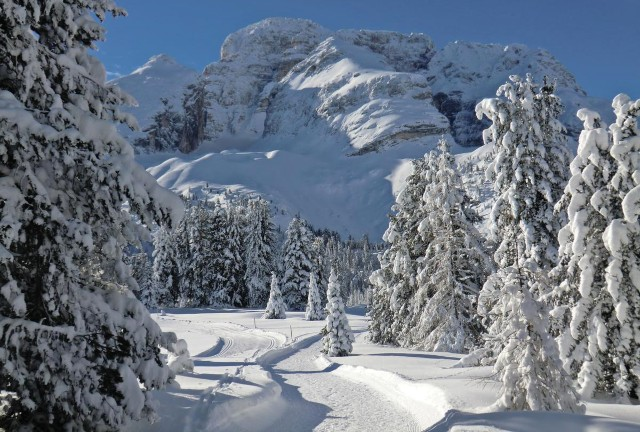 groupon-lago-di-braies-poracci-in-viaggio