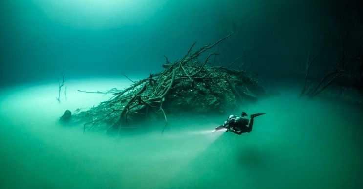Karışmayan Nehir, Meksika'daki Yucatan Yarımadası'da bulunan eşsiz bir yerdir.