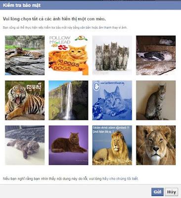 tao-app-facebook-6