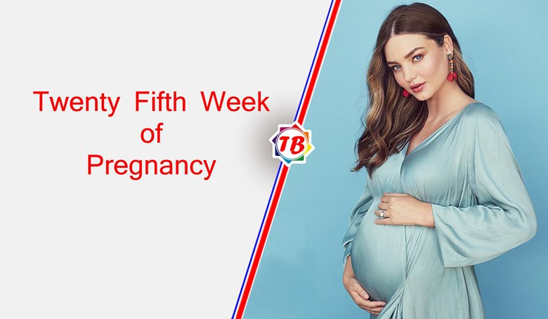 Twenty Fifth Week of Pregnancy