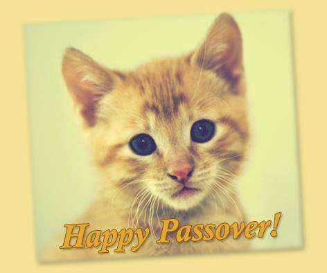Passover Wishes pics free download