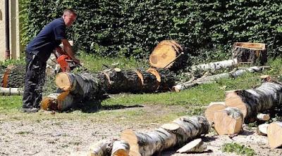 Faktor yang mempengaruhi pembagian batang kayu yang dihasilkan terdiri dari 5 bagian yaitu syarat yang diminta oleh pasar, politik penjualan kayu, penyaradan dan pemotongan kayu, permintaan konsumen, serta industri pengolahan kayu.