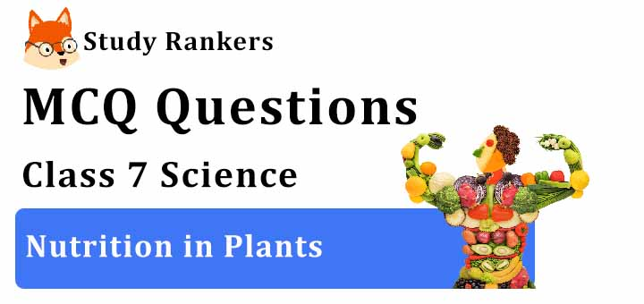 MCQ Questions for Class 7 Science: Ch 1 Nutrition in Plants