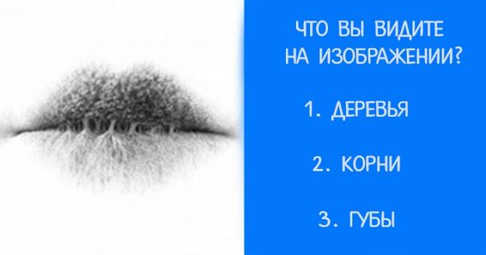 Тест: что вы видите на изображении?