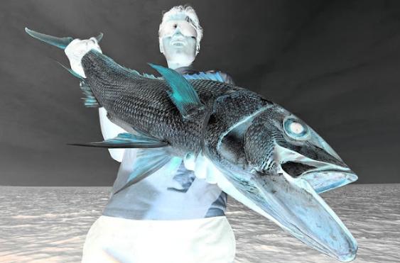 طرق صيد السمك الثقيل الصيد الاصعب