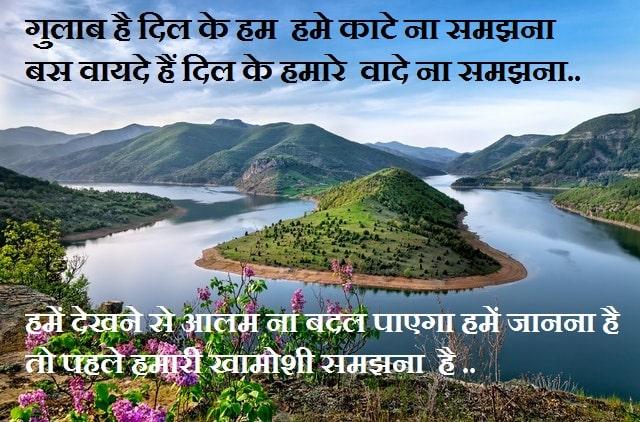 https://www.nepalishayari.com/2020/05/dosti-shayari-in-hindi.html