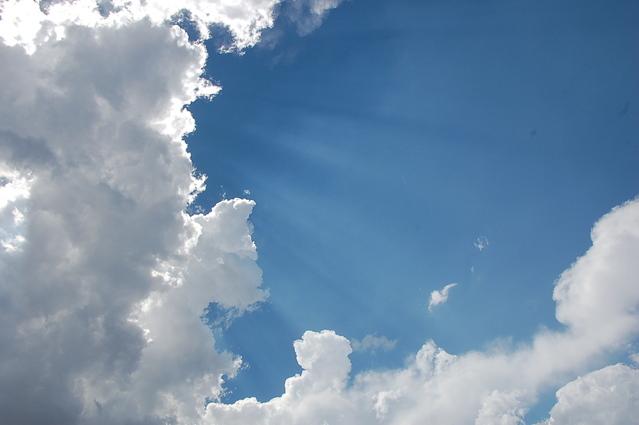 5 طرق طبيعية لتنقية الهواء يمكنك تجربتها