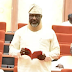 """I Changed My Seat At The Senate Because I Saw Lion, Tiger & Snakes On It"" - Melaye (Read)"