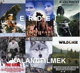 Erdei kalandfilmek