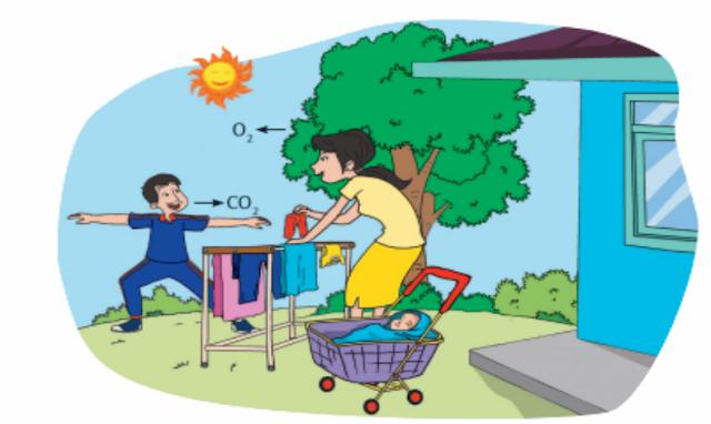 """Materi Kelas 4 SD/MI Bahasa Inggris """"Types of Energy Sources"""""""