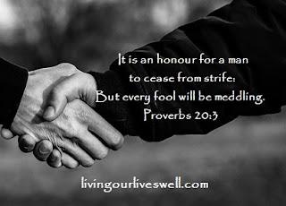 Proverbs 20:3