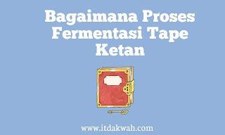 Bagaimana Proses Fermentasi Tape Ketan
