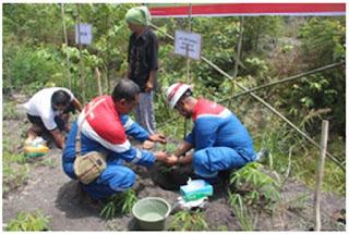 Cegah Erosi, Pertamina Adera Tanami 4000 Pohon Getul